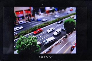 DSC00018.jpg
