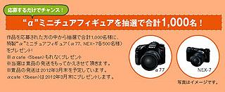 VZ001177.jpg