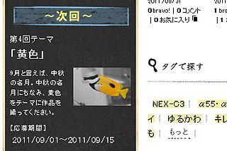 WS2101.jpg