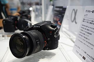DSC00045.jpg