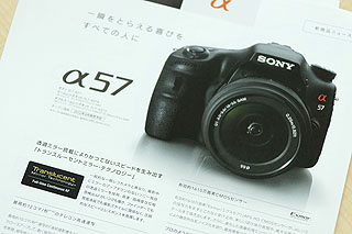 DSC01903.jpg