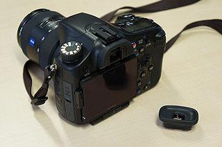 DSC05234.jpg